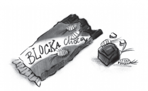 Blocka Choca